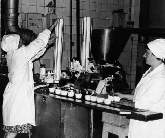 История компании «Ястро»